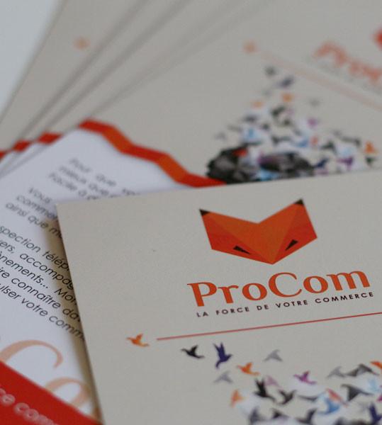 Création de l'image de marque de l'entreprise Procom à Dinan
